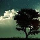 wolkenkraetzer